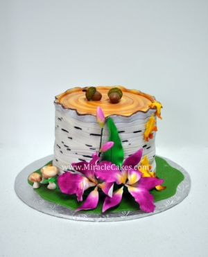 Birch bark cake for a cake auction
