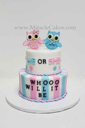 He or She Whooo will it be gender revealing cake