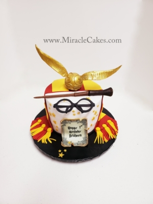 Harry Potter themed first birthday