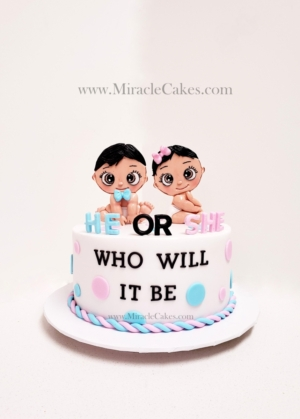 He or She Who will it be Gender reveling cake